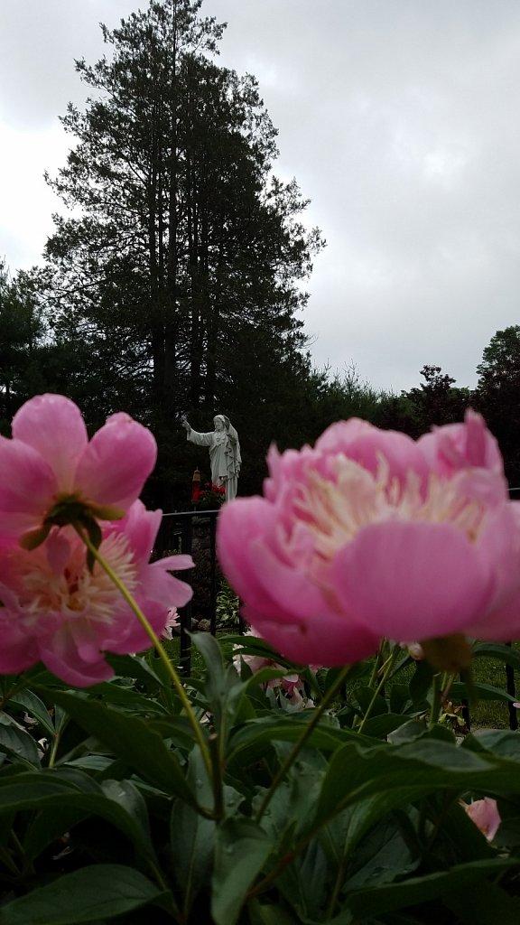 Flowers and Jesus