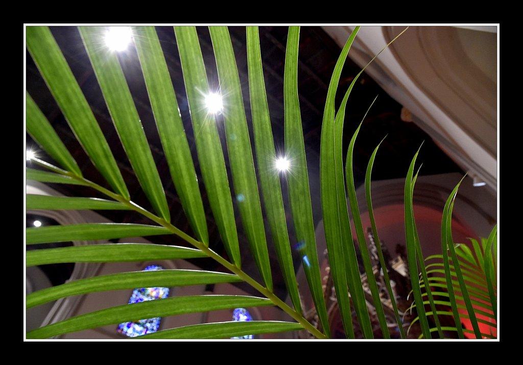 Palm Sunday Vigil Mass