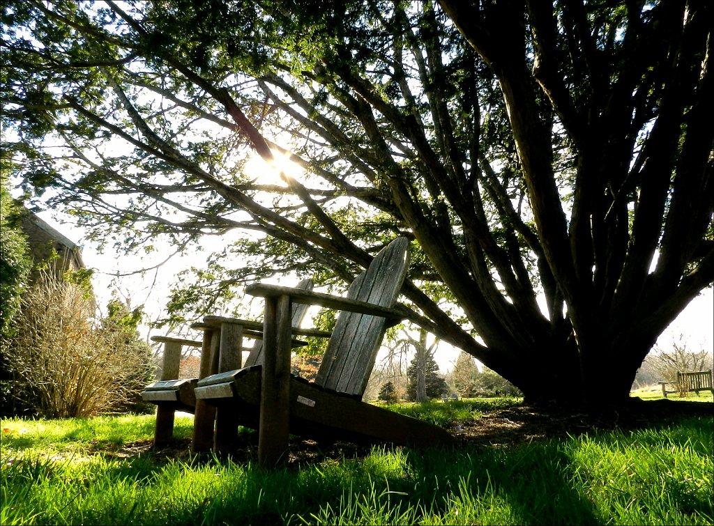 Willowwood Arboretum