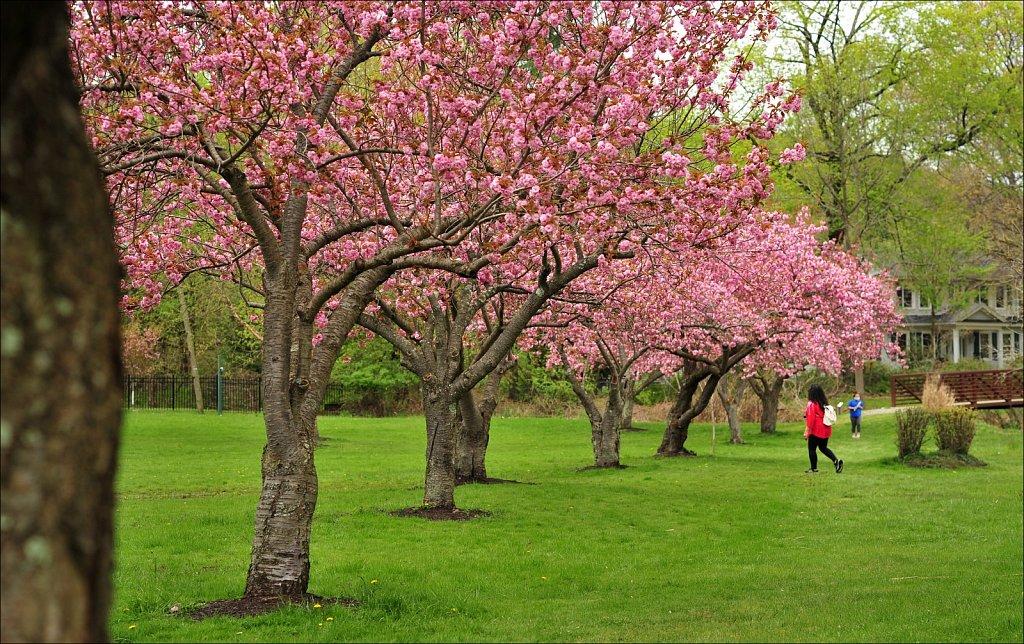 Hurd Park